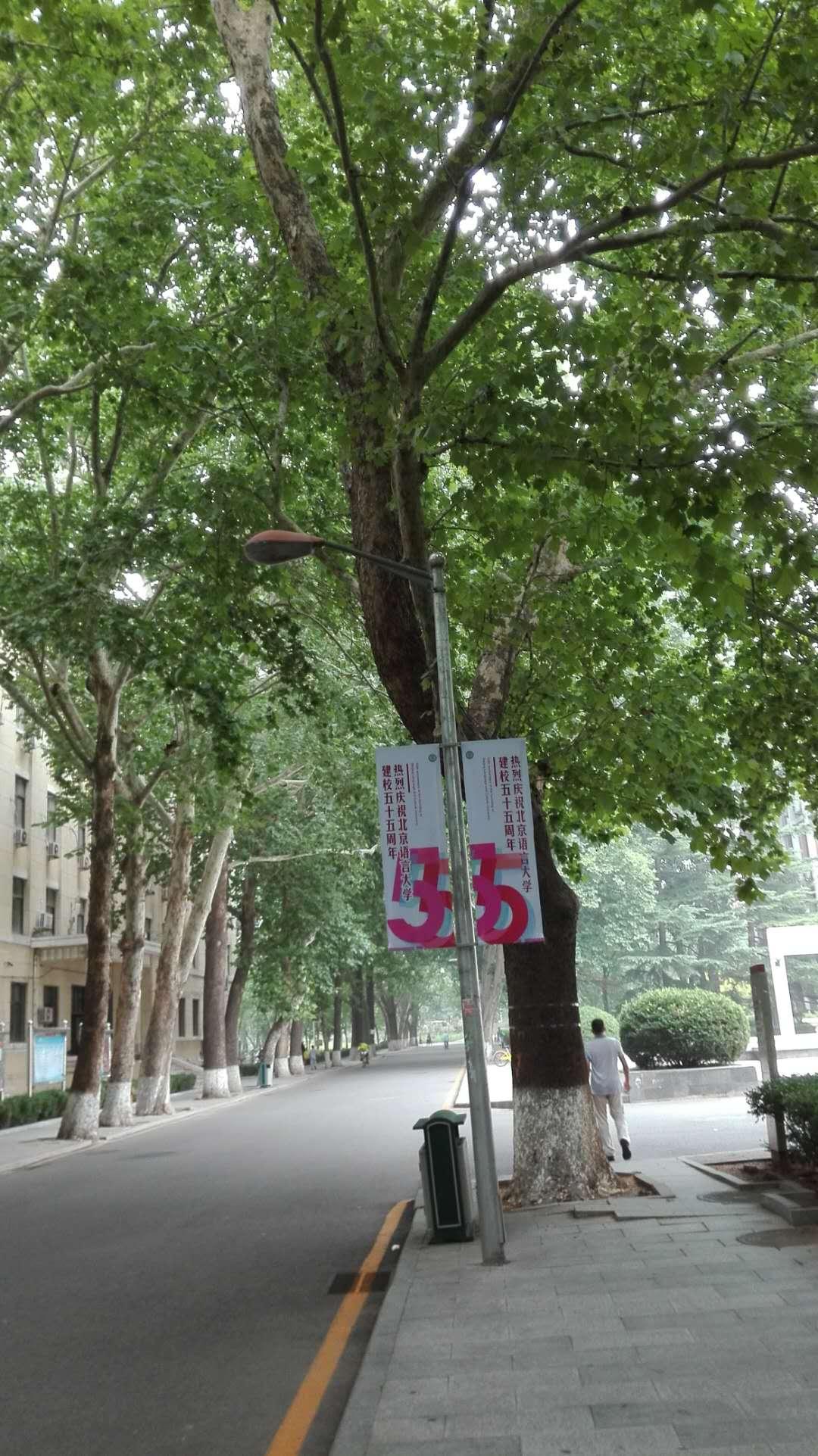 北京語言大学
